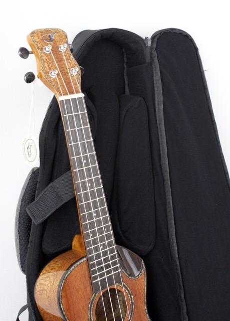 journey travel guitar instrument case