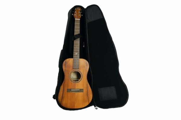 journey acoustic travel guitar junior guitar with bag