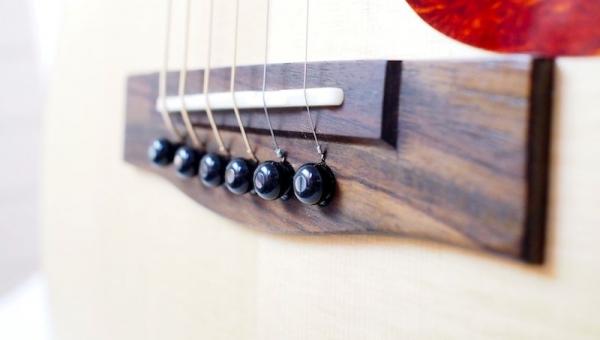 journey sitka sapele instrument case