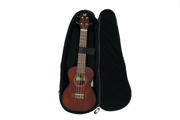 Journey travel guitar ukuleles