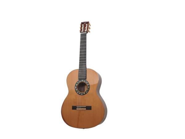 journey  travel guitar