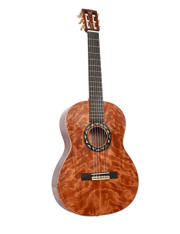 journey first class collapsible travel guitar